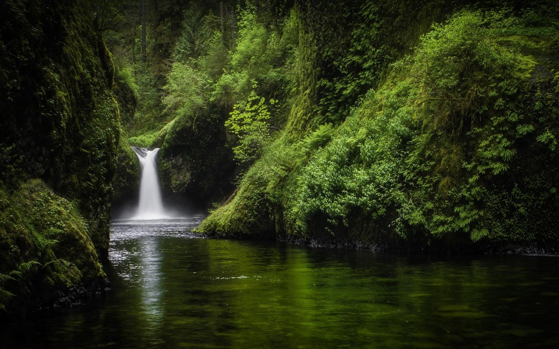 Bella caida de agua - 1440x900