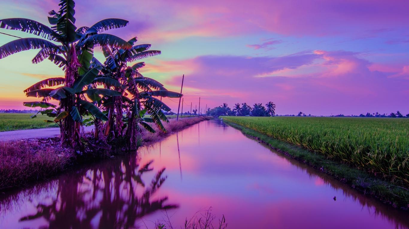 Puesta de Sol color Púrpura - 1366x768