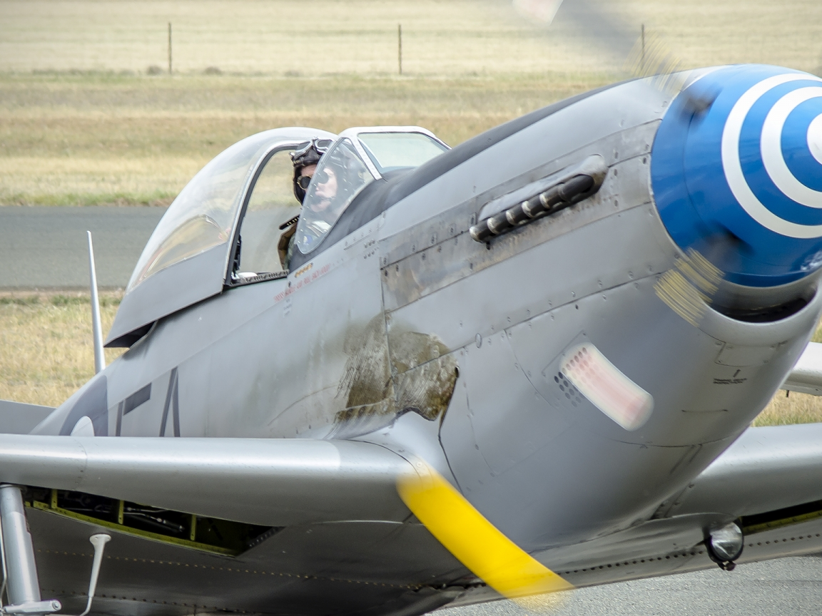 Avionetas  P-40N - 1152x864