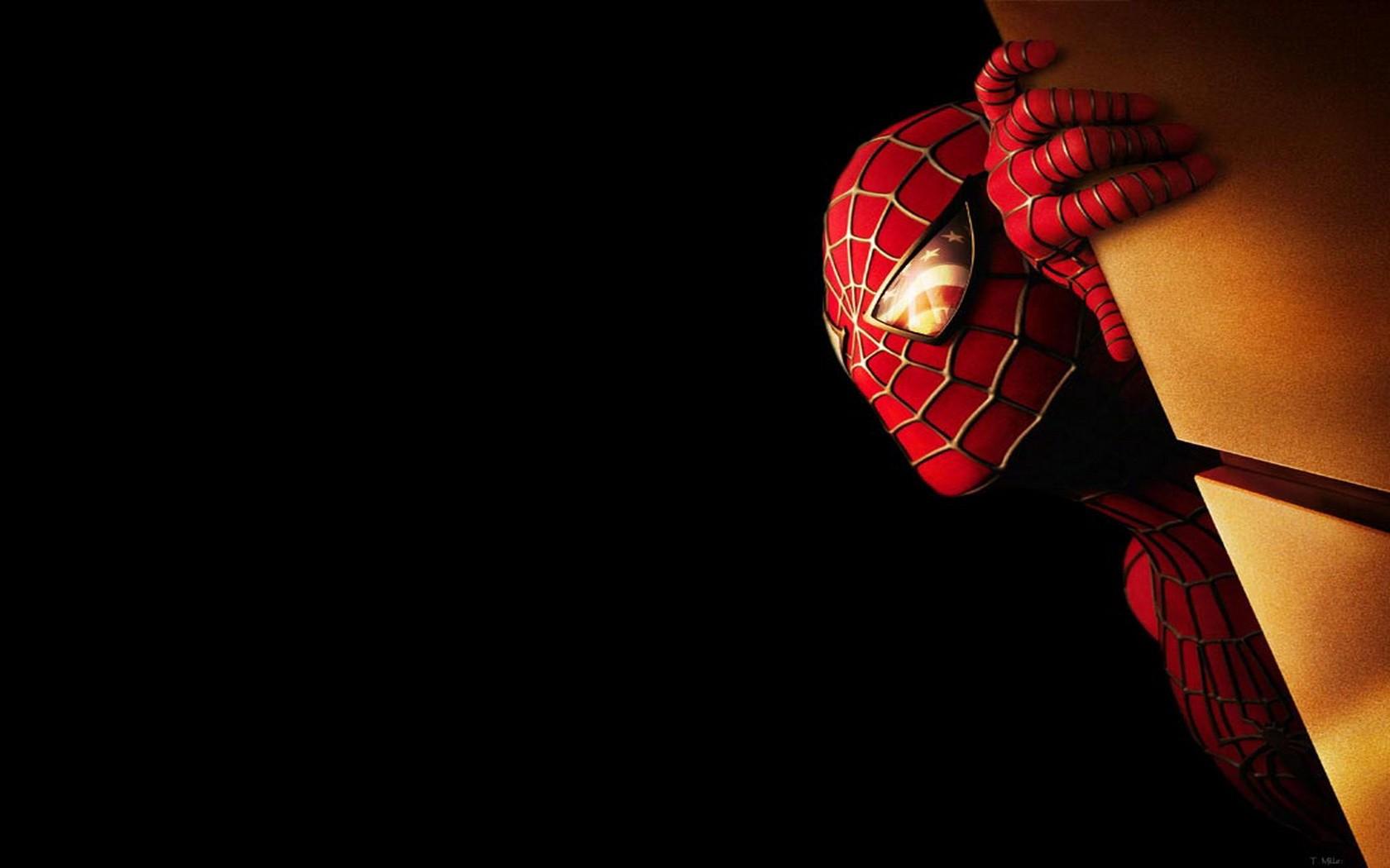 Spiderman 2013 - 1680x1050