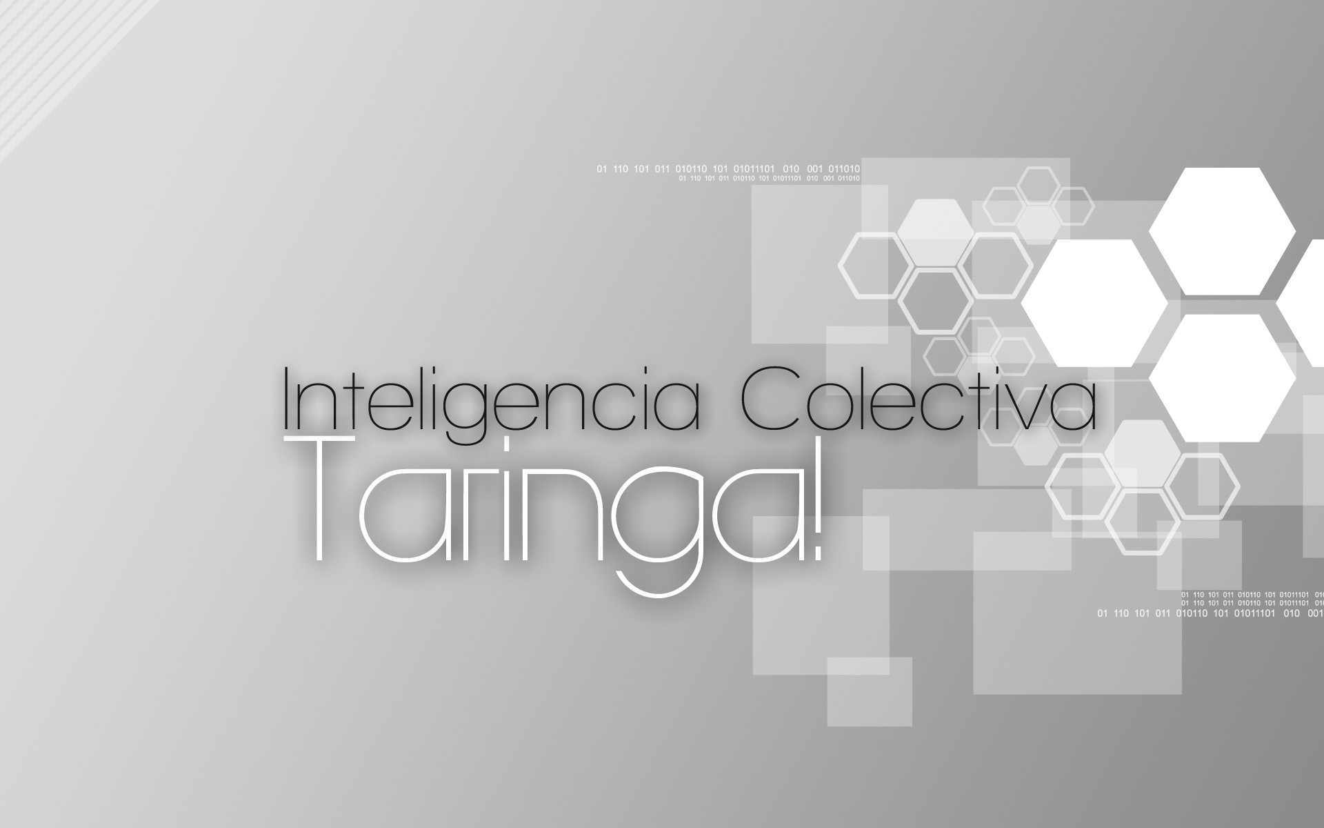 Taringa, inteligencia colectiva - 1920x1200