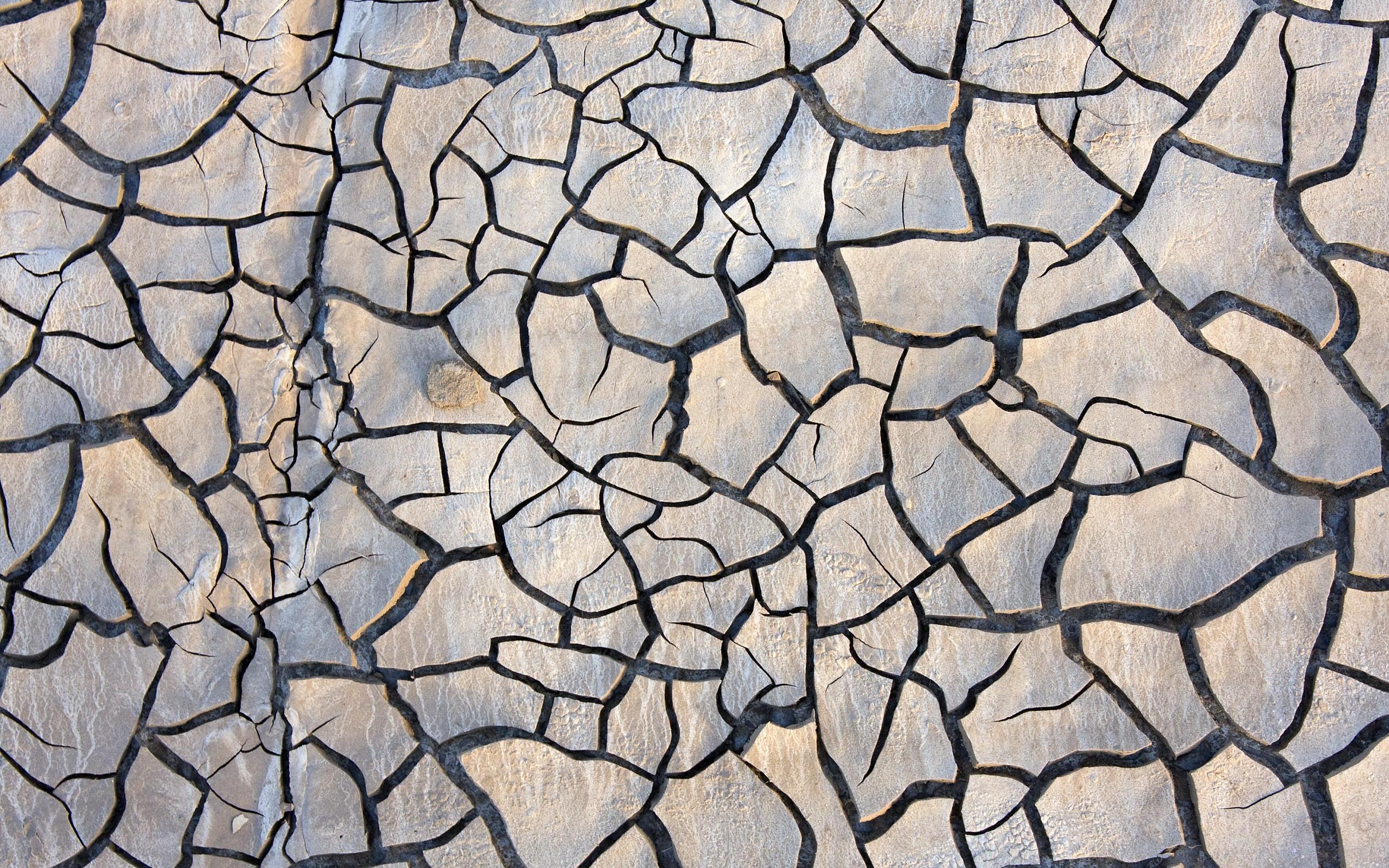 Textura de rocas - 2560x1600