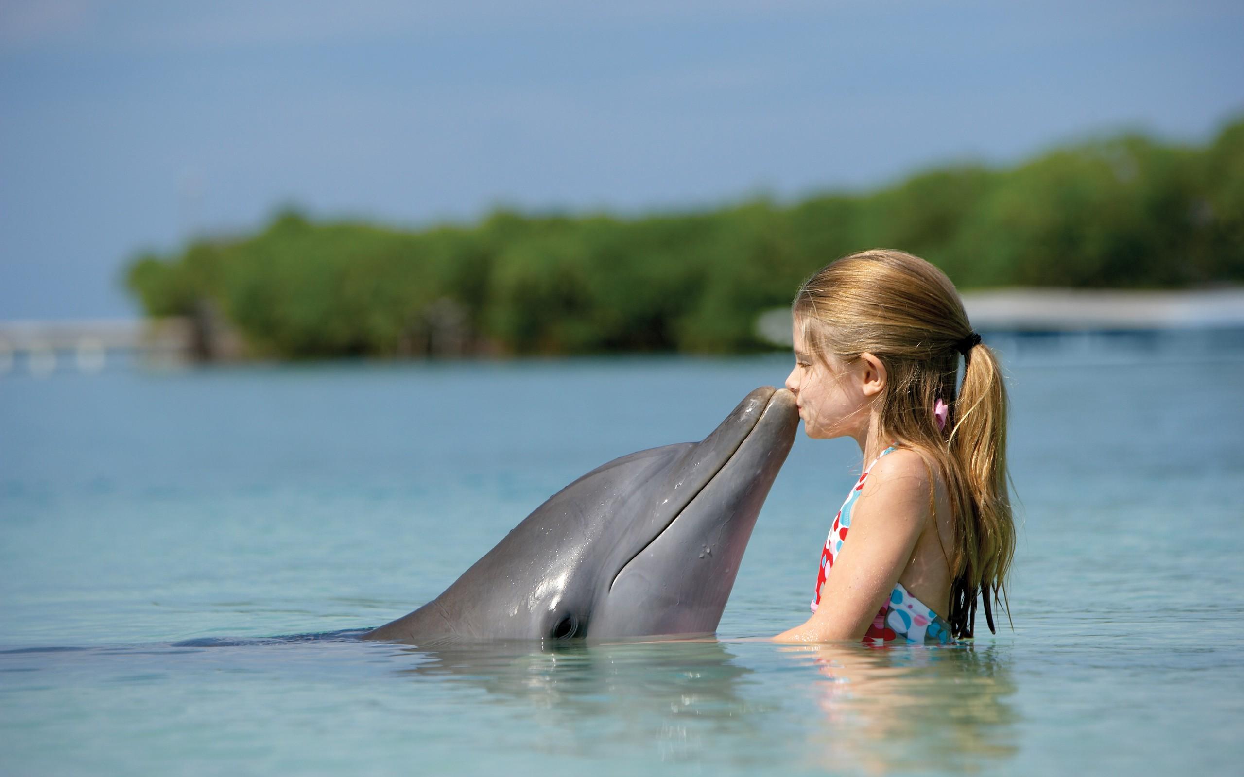 Un beso al delfín - 2560x1600