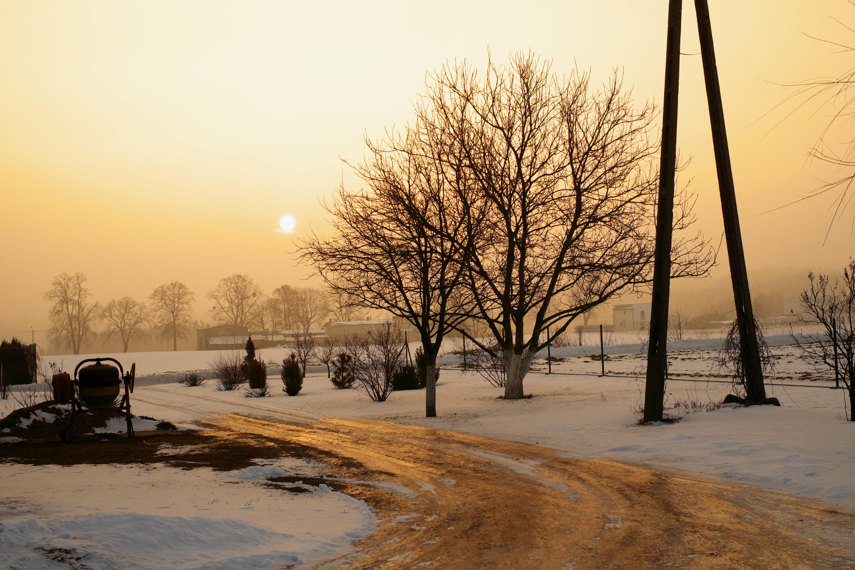 Una fotografía en la mañana - 4896x3264