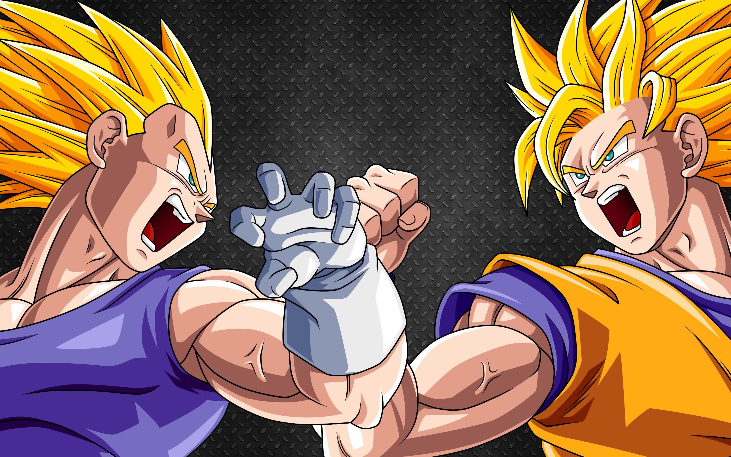 Vegeta y Goku - 2560x1600